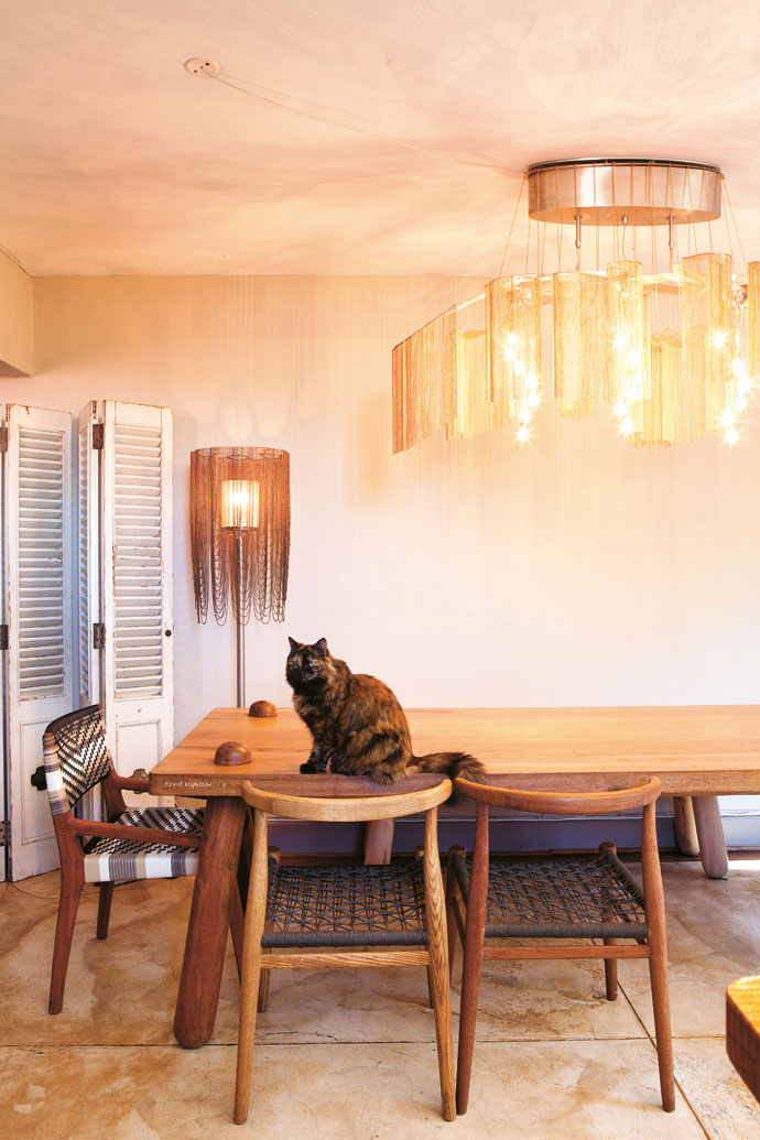 Adam's cat Humbug perches on a David Krynauw dining table, supported by Vogel chairs. Anelongated Enchanted Faraway Tree chandelier runs the length of  the table.