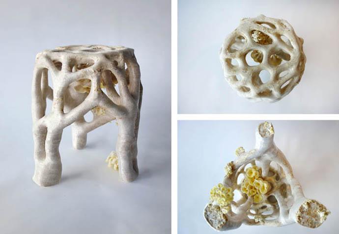 Eric Klarenbeek's Mycelium Project