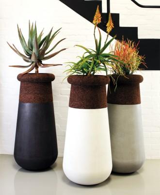 Indigenus Planters