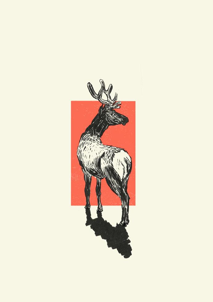 Ishaarah_Deer