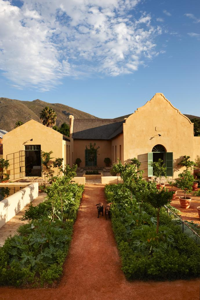 The gabled Cape Dutch house, as seen from the citrus garden. The ochre exterior, unusual in Montagu, is believed to have been the original colour, found beneath layers of paint during the renovation.
