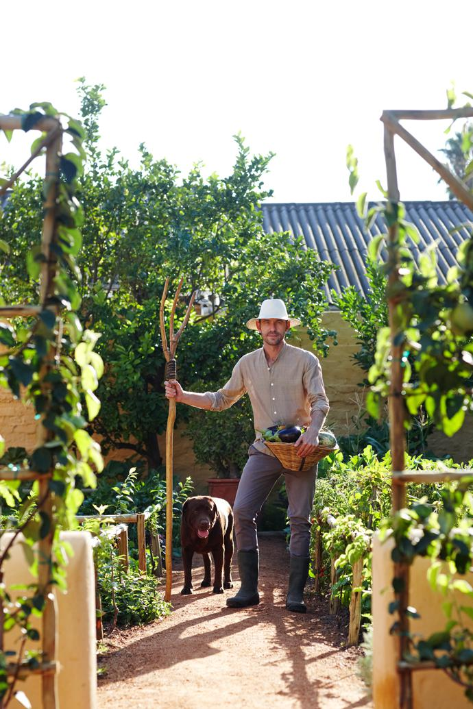 Jacques and Max the Labrador in the garden. What was meant to be a vegetable garden big enough to feed family and friends is now producing enough to supply the restaurant in Cape Town too.