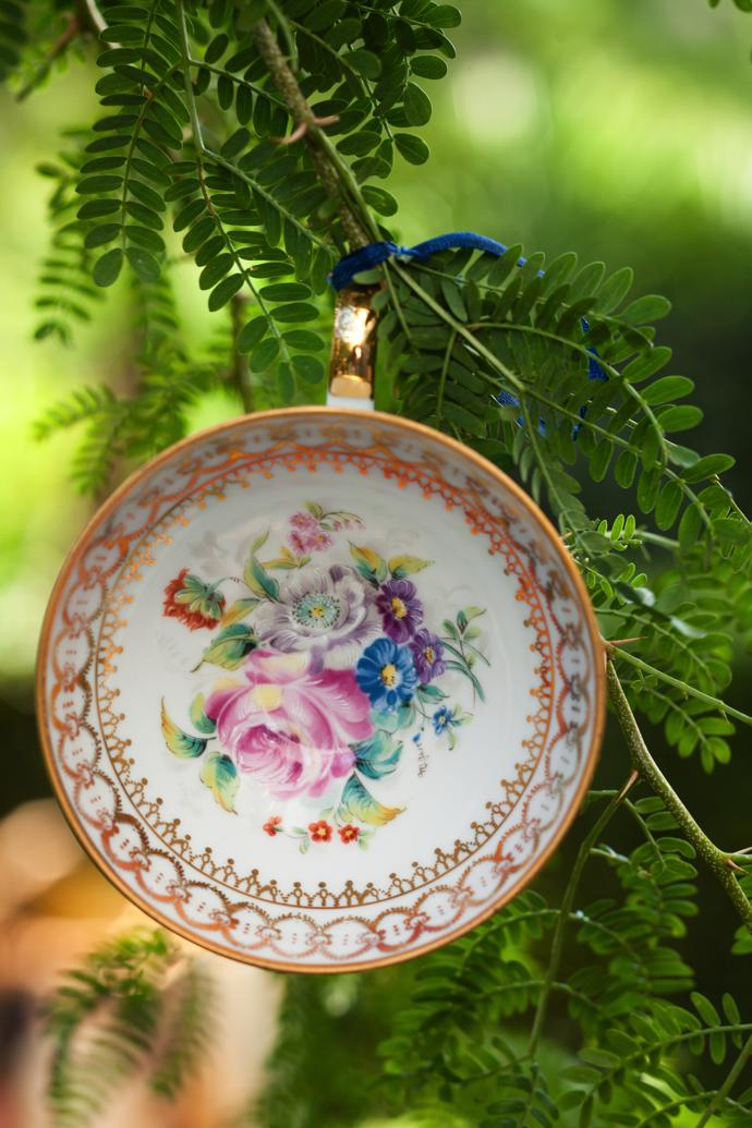 """""""Porcelain flowers"""", or Grandma's flying cups, as Wim calls them, bloom all year round."""