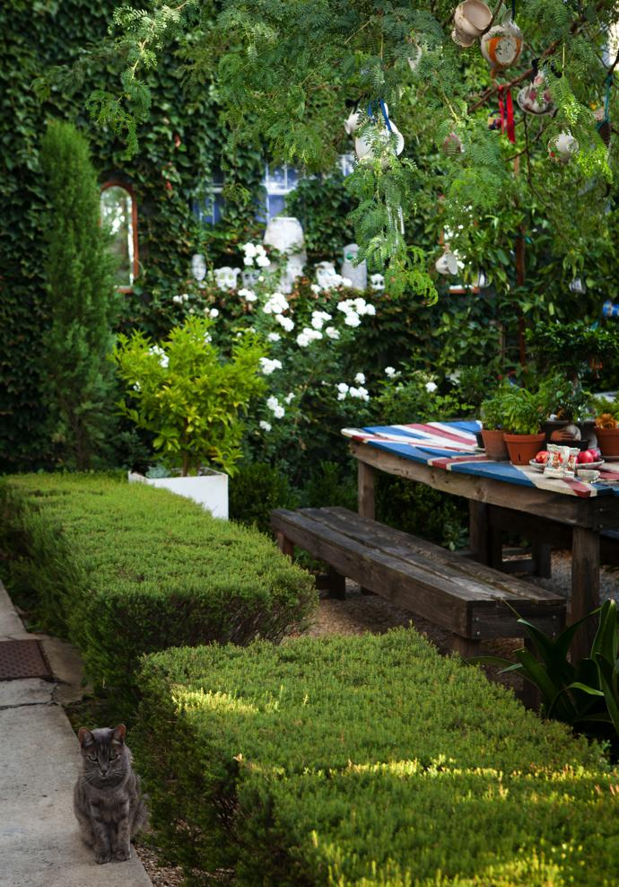 Wim's garden is a source or relaxation and rejuvenation.