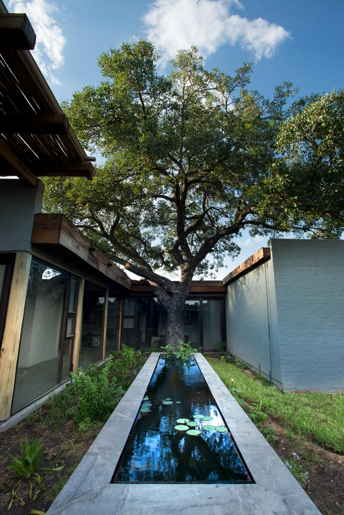 Nicholas Plewman Architects designed the water feature in the central courtyard.
