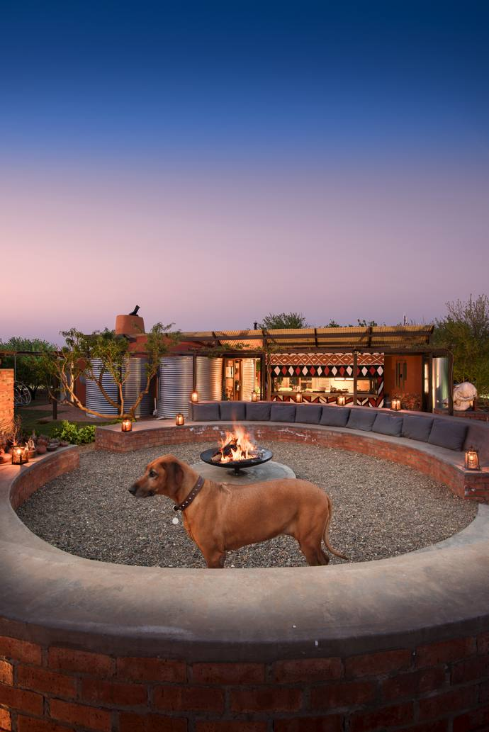 Lili the Rhodesian ridgeback stands in the private boma, where Henning and Dawie enjoy spending time and entertaining family and friends. The walls of the house are plastered with red soil from the property and adorned with Ndebele mural art.