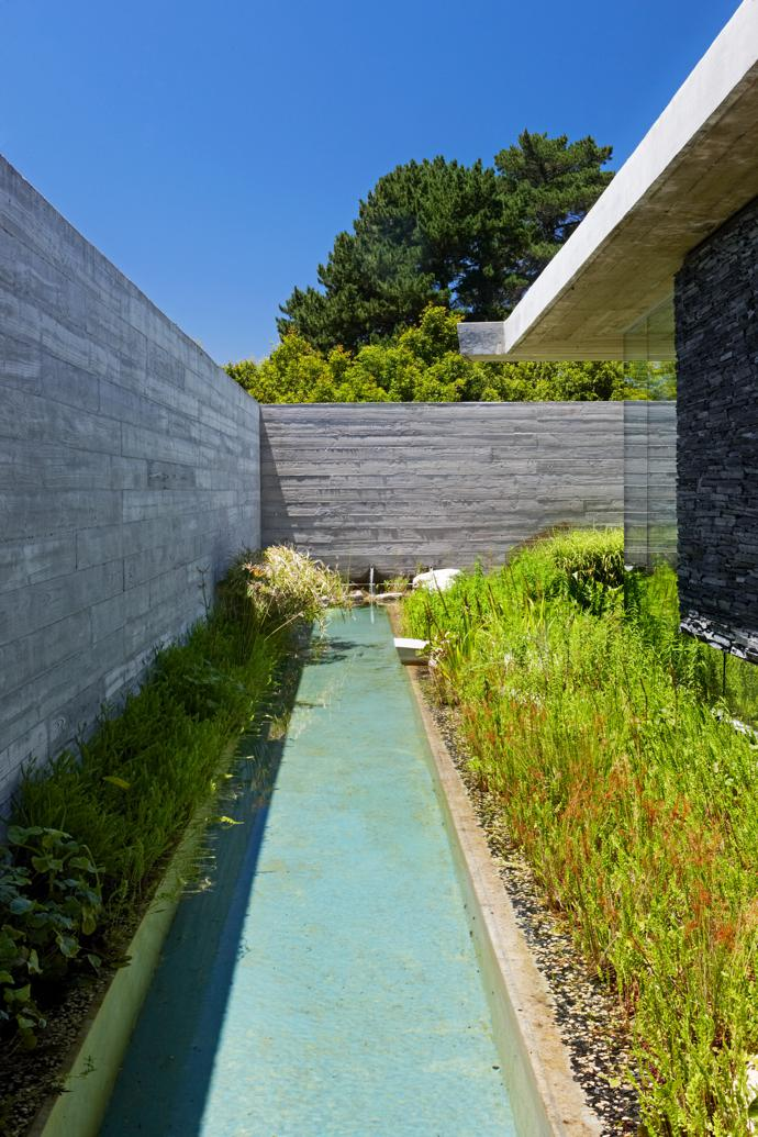 This pool, which runs the length of one of the main axes of the house, is fed by rainwater that is channelled from the roof into a concrete spout. The water remains sparkling clean thanks to being circulated through plants.