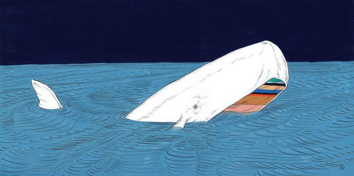 Whale, 2016