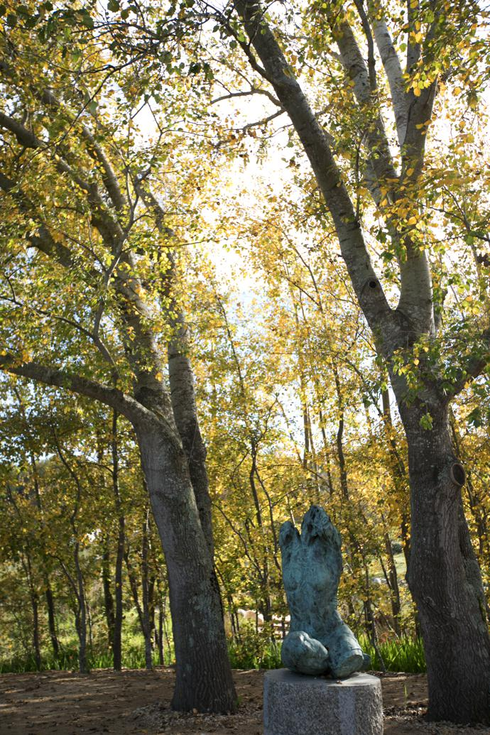 """Torso III rests on a plinth in a poplar grove, where the quietness is almost overwhelming. """"The torso has always fascinated me. There is something beautiful about brokenness – the incomplete, imperfect form, the absence of the head."""""""