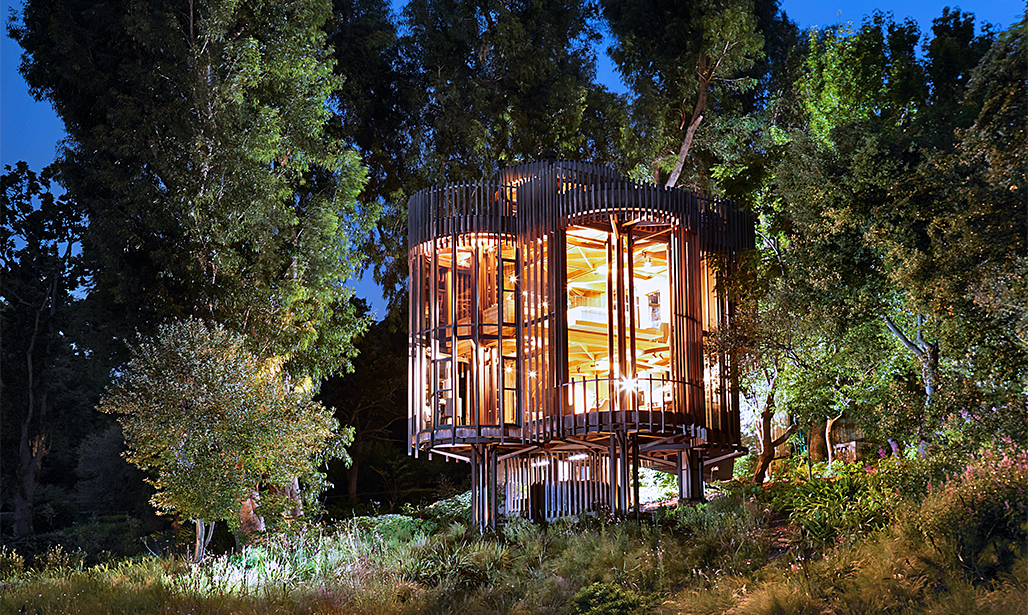 Treehouse Inspired Constantia Home