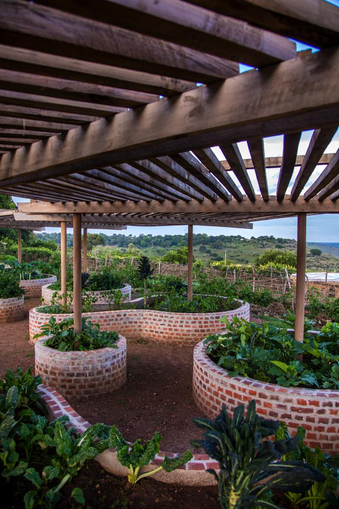 """Raised beds in the rotating """"vegetable clock""""."""