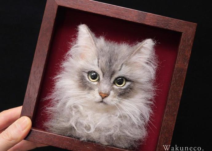 wakuneco cats8