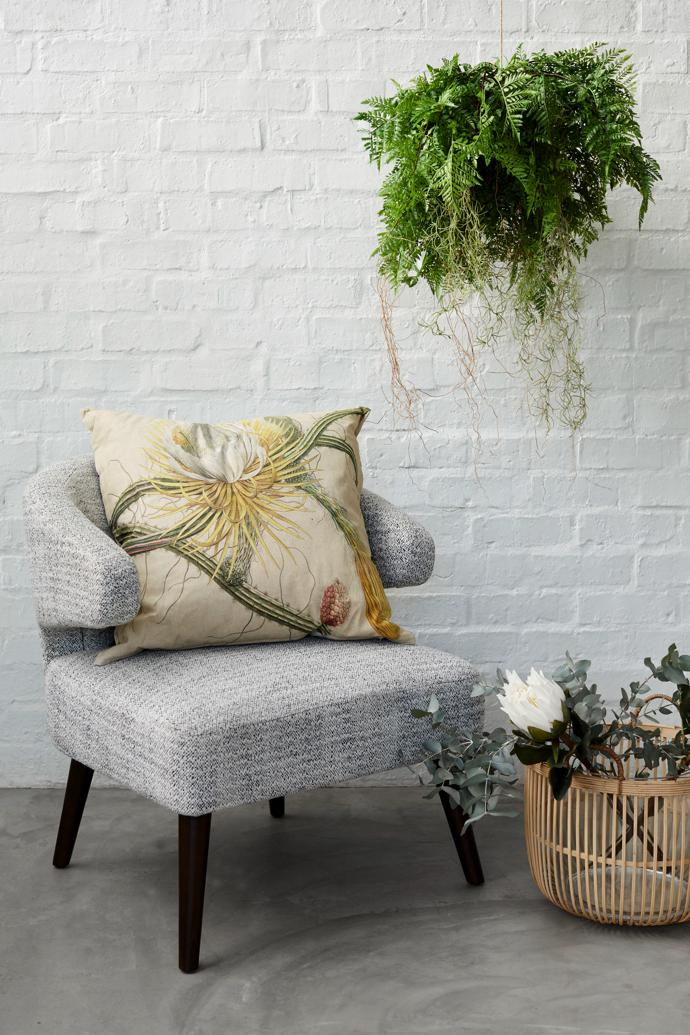Awaken: Mino Arm Chair, Large Hanging Fern and Roots.