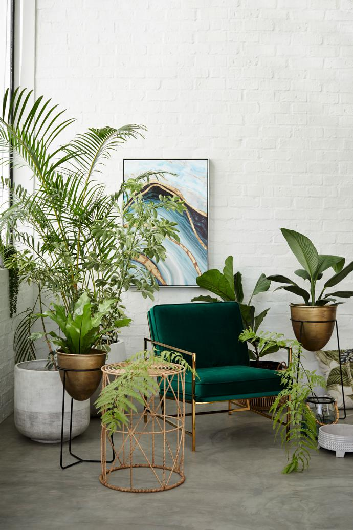 Grow: Forest Green Jonathan Occasional Chair, Prelude Side Table, Rattan Round Side Table, Gold Planter on Black Metal Stand, Hurricane Glass with Bamboo Handle, Cement Planter.