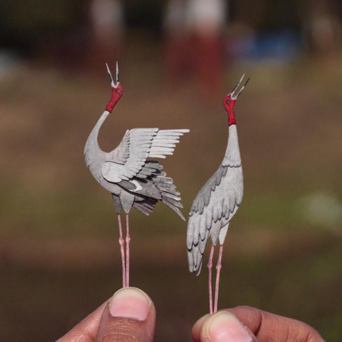 PapercutBirds17