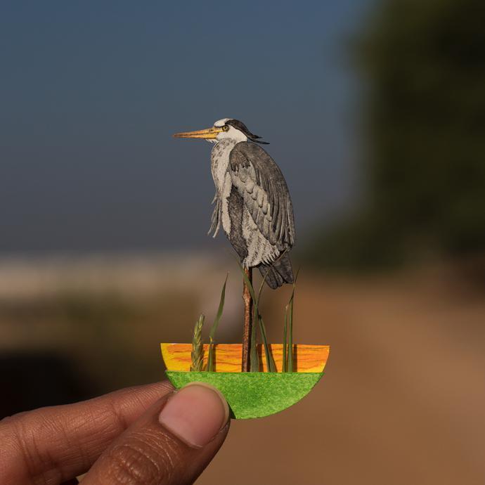 PapercutBirds4