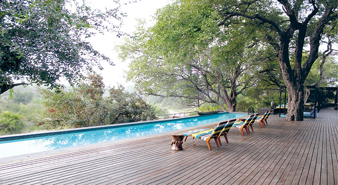 A magnificent jackalberry tree presides over Vogel loungers next to the 25 m lap pool, from which elephants sometimes drink.
