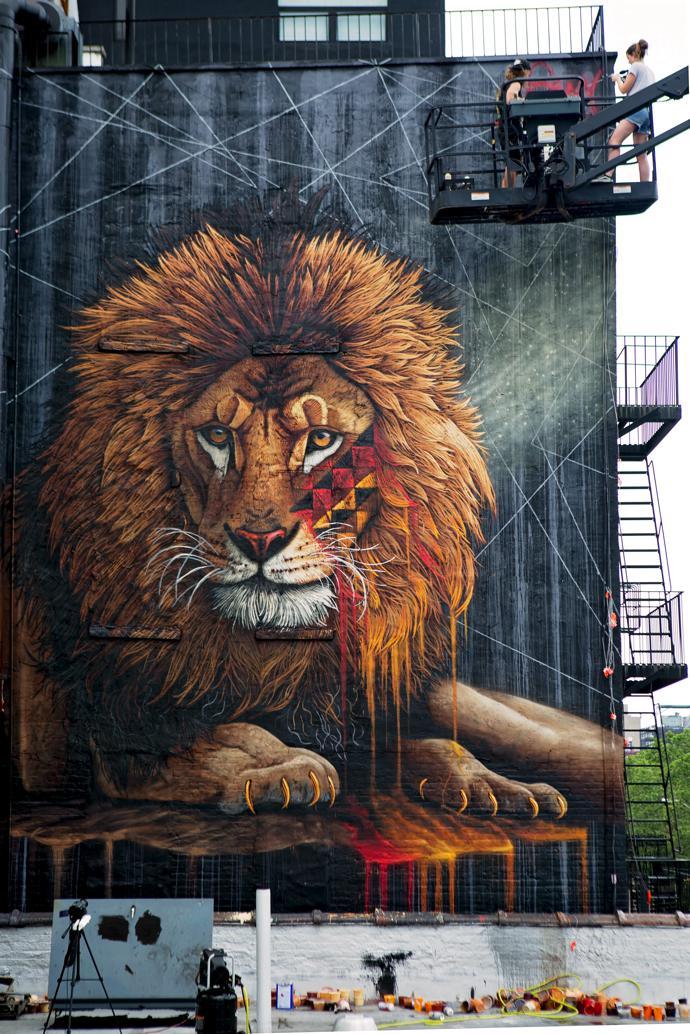 NY Lion, New York.
