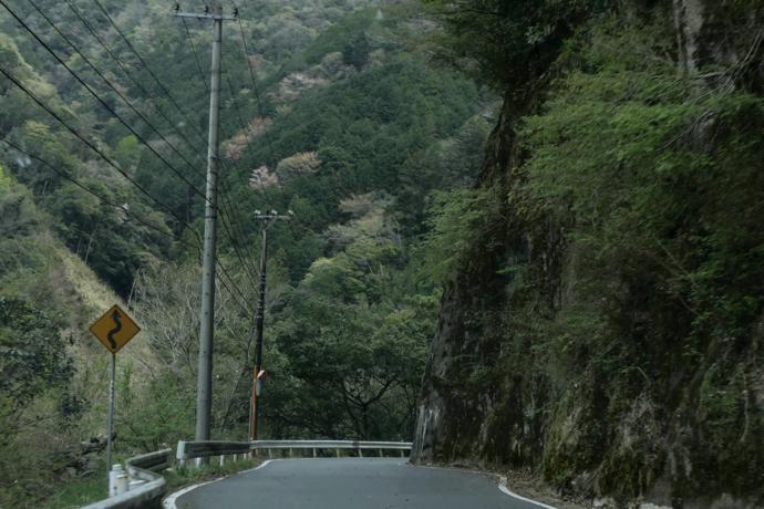 On the road, Wakayama Prefecture
