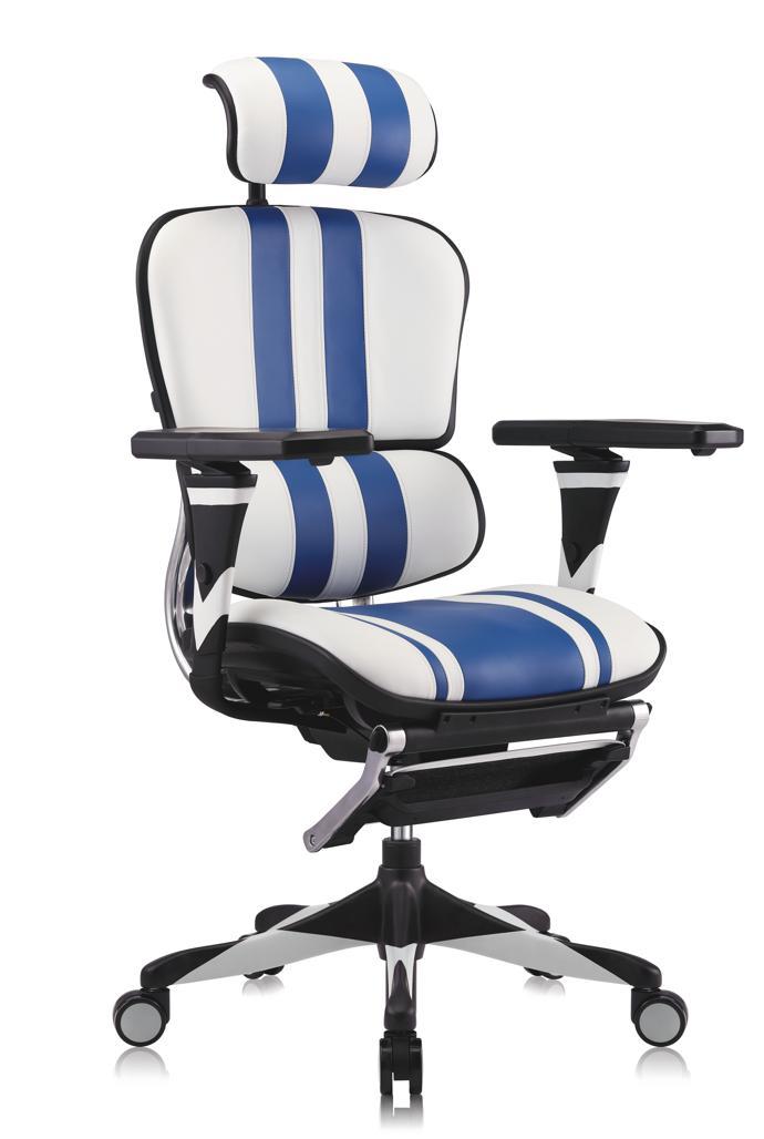 Ergohuman Gaming Chair