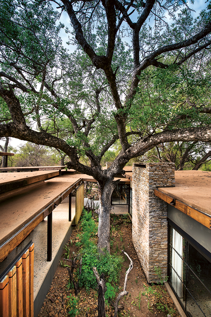 Nic Plewman looked at the South African vernacular of the stoep, and reinterpreted the colonial mainstays of steel, timber and stone in a contemporary way. Flat roofs, coated in river sand from the site, allow the guest suites to blend into the natural surrounds.