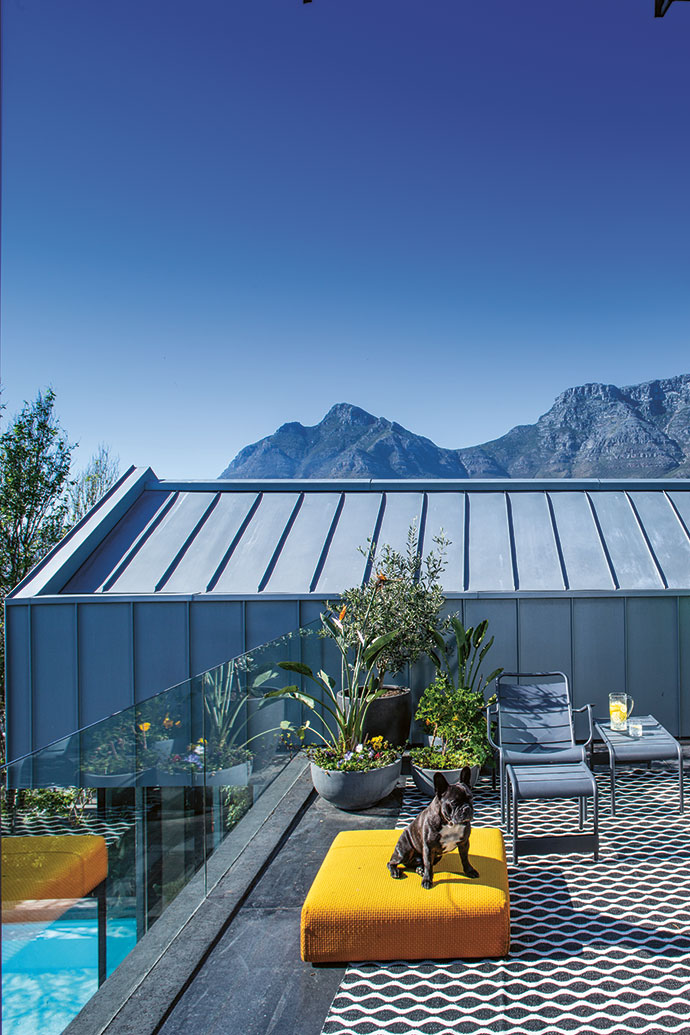 The zinc roof was extended to form modern utilitarian cladding. Bobby enjoys the sunshine on the upstairs balcony, which sports outdoor furniture from Fermob and an outdoor carpet from Weylandts.