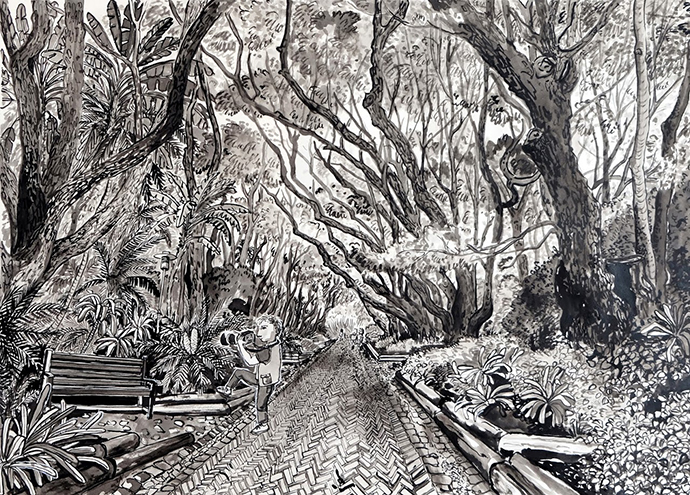 Camphour Avenue, Indian Ink on Saunders Waterford Paper, 46.5 x 34.5cm