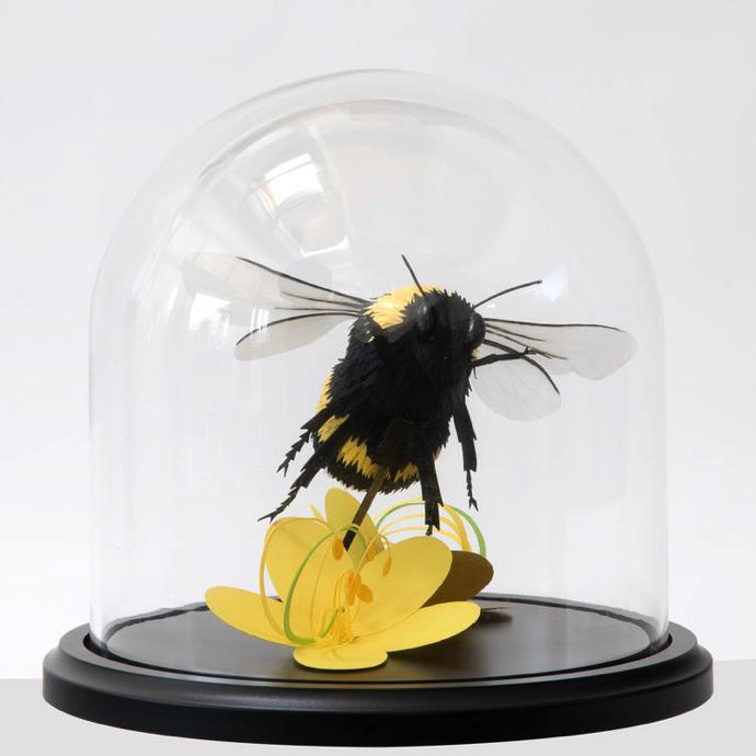 LISA+LLOYD+BEE+DOME+2