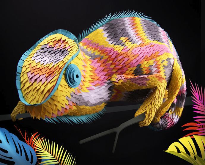 Lisa+Lloyd+Chameleon