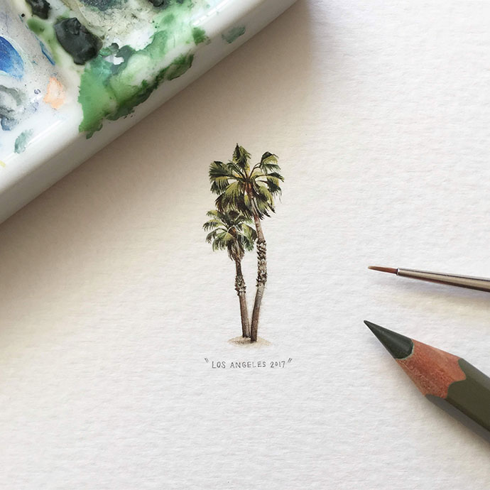 Palm Tree, Los Angeles, 2017