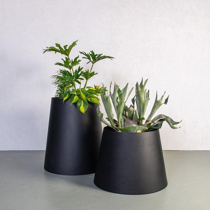 Planters_Plantr