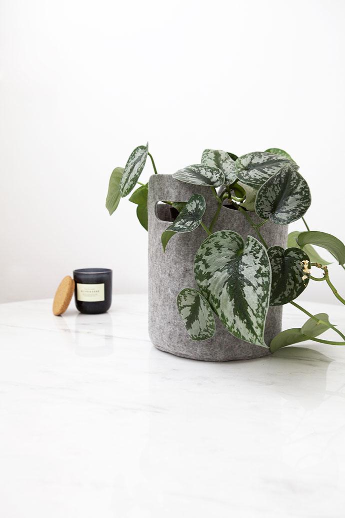 Storage Basket/Planter
