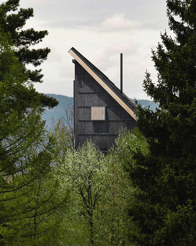 Cabin with Potential for Spying