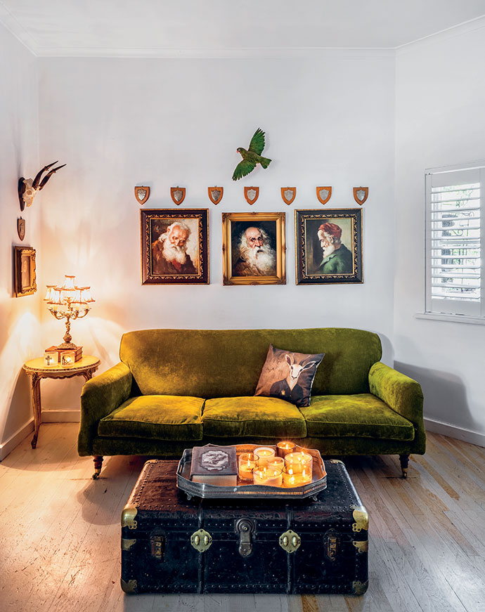 """An imported corduroy sofa is a bold centrepiece in the """"kitchen lounge"""". Above a """"three wise men"""" collection of vintage portraits, a taxidermy mount of a green parrot adds an unexpected twist."""