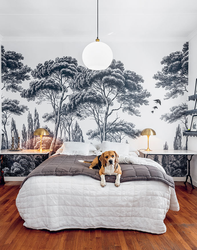 Marti's much-loved beagle, Garçon, feels quite at home in the symmetrical spare room. The wall art was created by a friend.